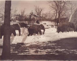 photo from Bernard Collection; Hudson River Valley Heritage